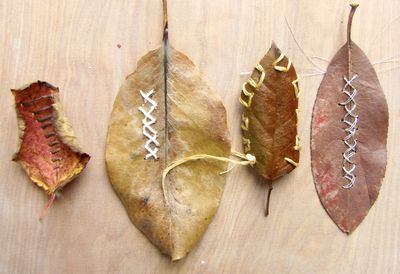 Student stitched leaves