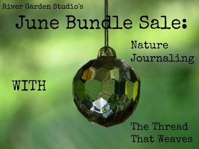 June Bundle Sale